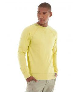 Frankie  Sweatshirt-XL-Yellow